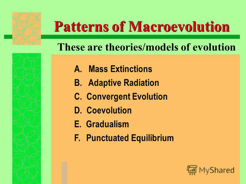 Patterns of Macroevolution A. Mass Extinctions B. Adaptive Radiation C. Convergent Evolution D. Coevolution E. Gradualism F. Punctuated Equilibrium These are theories/models of evolution