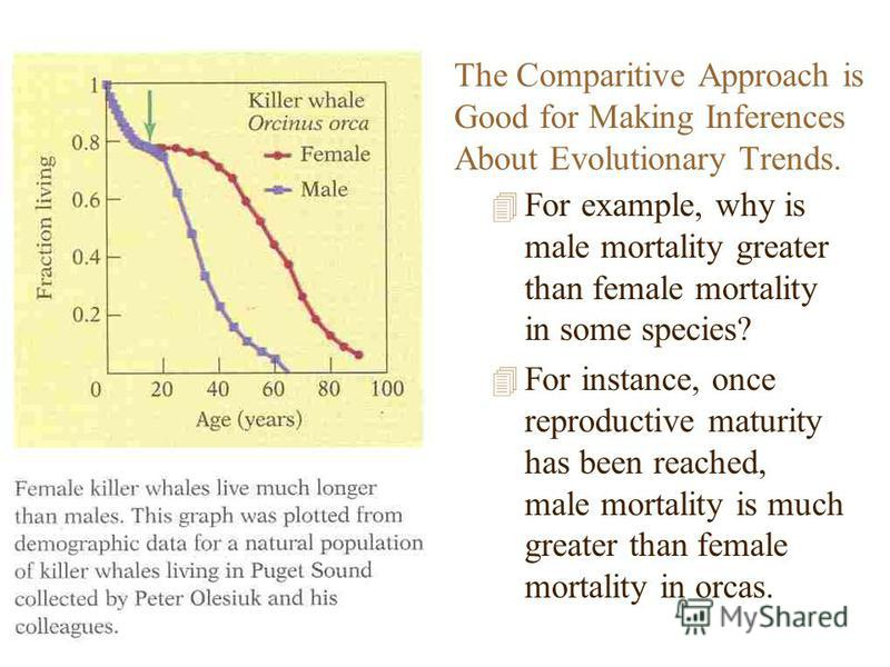 The Comparitive Approach is Good for Making Inferences About Evolutionary Trends. 4 For example, why is male mortality greater than female mortality in some species? 4 For instance, once reproductive maturity has been reached, male mortality is much