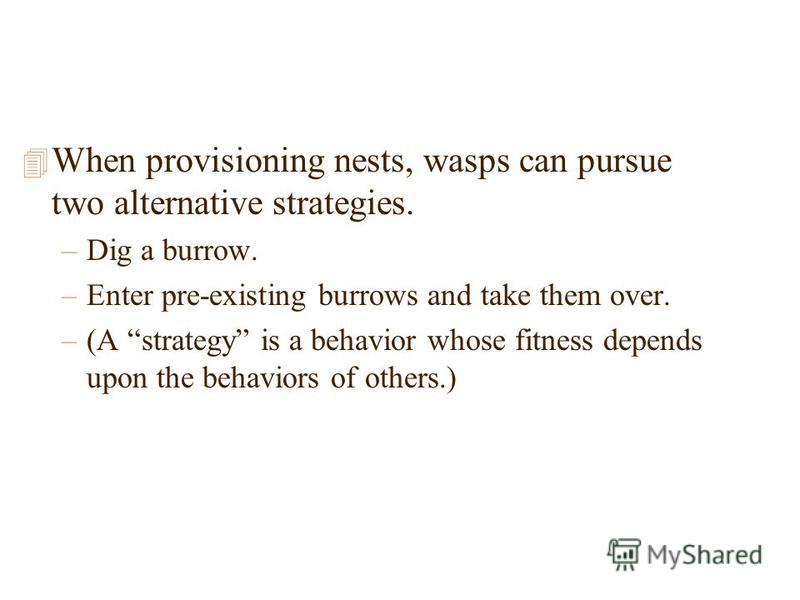 4 When provisioning nests, wasps can pursue two alternative strategies. –Dig a burrow. –Enter pre-existing burrows and take them over. –(A strategy is a behavior whose fitness depends upon the behaviors of others.)