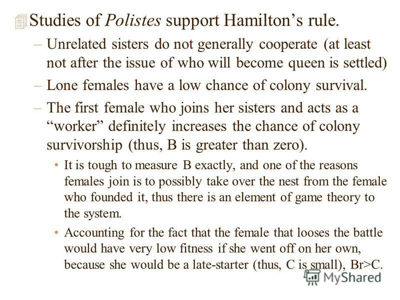 4 Studies of Polistes support Hamiltons rule. –Unrelated sisters do not generally cooperate (at least not after the issue of who will become queen is settled) –Lone females have a low chance of colony survival. –The first female who joins her sisters