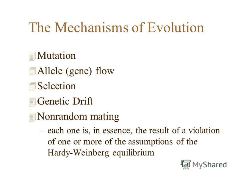 The Mechanisms of Evolution 4 Mutation 4 Allele (gene) flow 4 Selection 4 Genetic Drift 4 Nonrandom mating –each one is, in essence, the result of a violation of one or more of the assumptions of the Hardy-Weinberg equilibrium