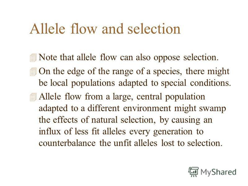 Allele flow and selection 4 Note that allele flow can also oppose selection. 4 On the edge of the range of a species, there might be local populations adapted to special conditions. 4 Allele flow from a large, central population adapted to a differen