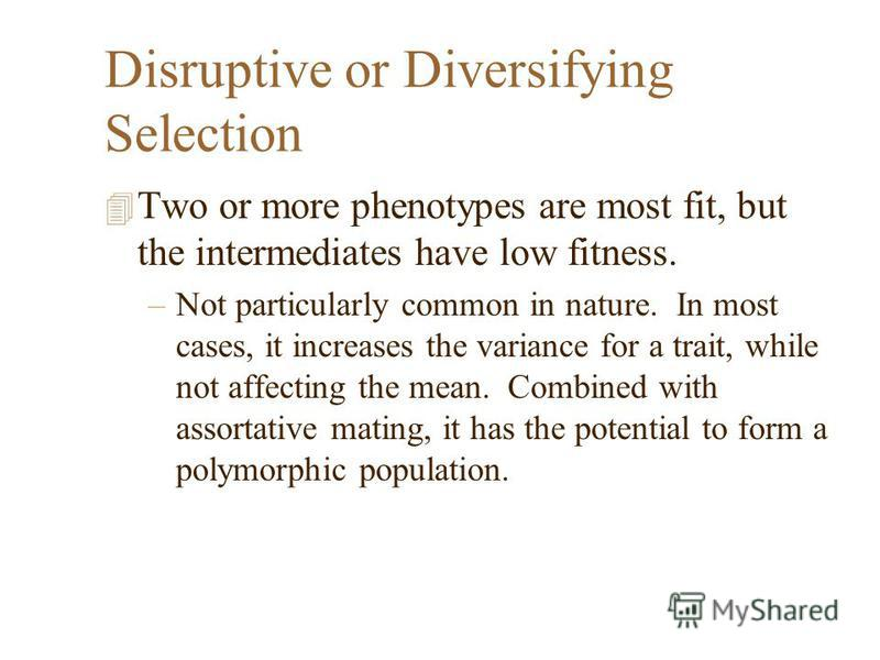Disruptive or Diversifying Selection 4 Two or more phenotypes are most fit, but the intermediates have low fitness. –Not particularly common in nature. In most cases, it increases the variance for a trait, while not affecting the mean. Combined with