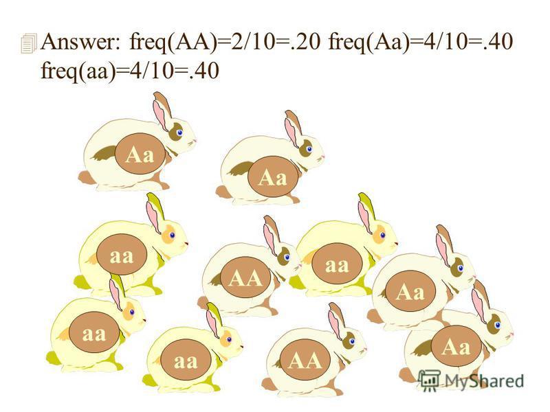 4 Answer: freq(AA)=2/10=.20 freq(Aa)=4/10=.40 freq(aa)=4/10=.40 Aa AA Aa aa