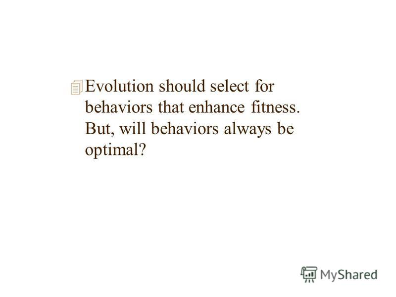 4 Evolution should select for behaviors that enhance fitness. But, will behaviors always be optimal?