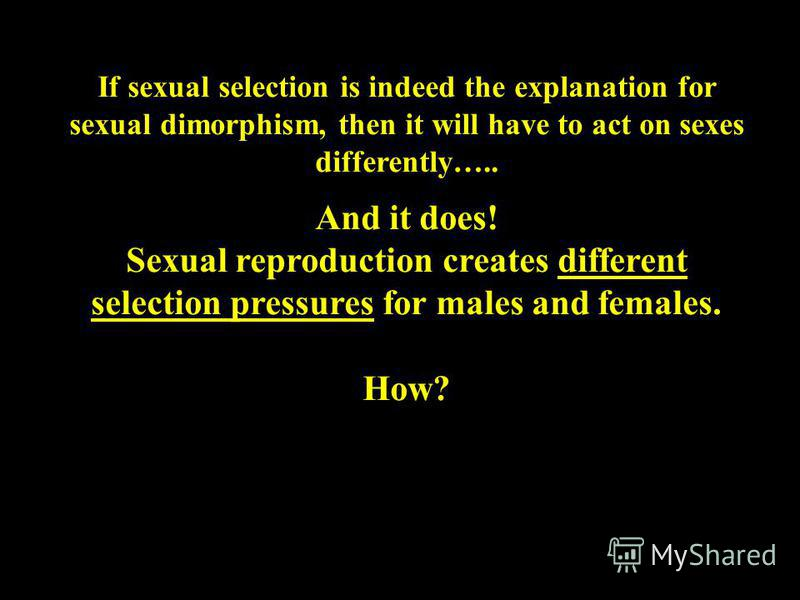 If sexual selection is indeed the explanation for sexual dimorphism, then it will have to act on sexes differently….. And it does! Sexual reproduction creates different selection pressures for males and females. How?
