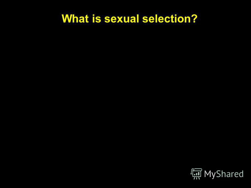 What is sexual selection?