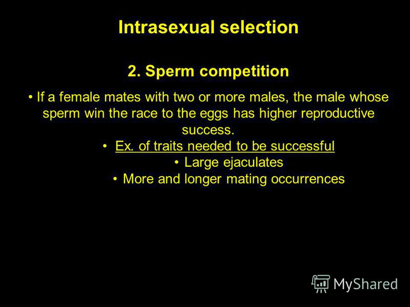 Intrasexual selection 2. Sperm competition If a female mates with two or more males, the male whose sperm win the race to the eggs has higher reproductive success. Ex. of traits needed to be successful Large ejaculates More and longer mating occurren