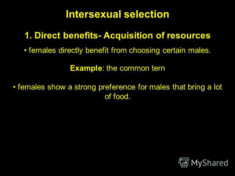 Intersexual selection 1. Direct benefits- Acquisition of resources females directly benefit from choosing certain males. Example: the common tern females show a strong preference for males that bring a lot of food.