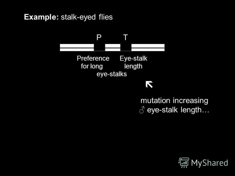 P T Example: stalk-eyed flies Preference Eye-stalk for long length eye-stalks mutation increasing eye-stalk length…