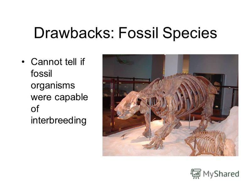 Drawbacks: Fossil Species Cannot tell if fossil organisms were capable of interbreeding