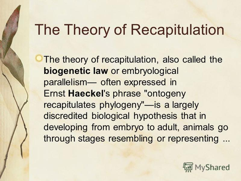 The Theory of Recapitulation The theory of recapitulation, also called the biogenetic law or embryological parallelism often expressed in Ernst Haeckel's phrase