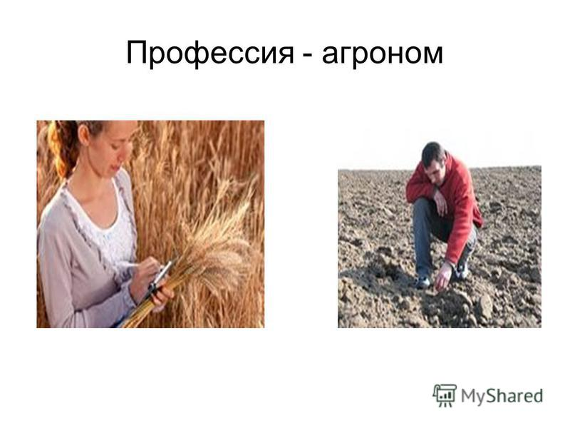 Профессия - агроном