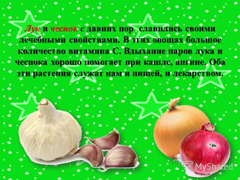 Лук и чеснок с давних пор славились своими лечебными свойствами. В этих овощах большое количество витамина С. Вдыхание паров лука и чеснока хорошо помогает при кашле, ангине. Оба эти растения служат нам и пищей, и лекарством.