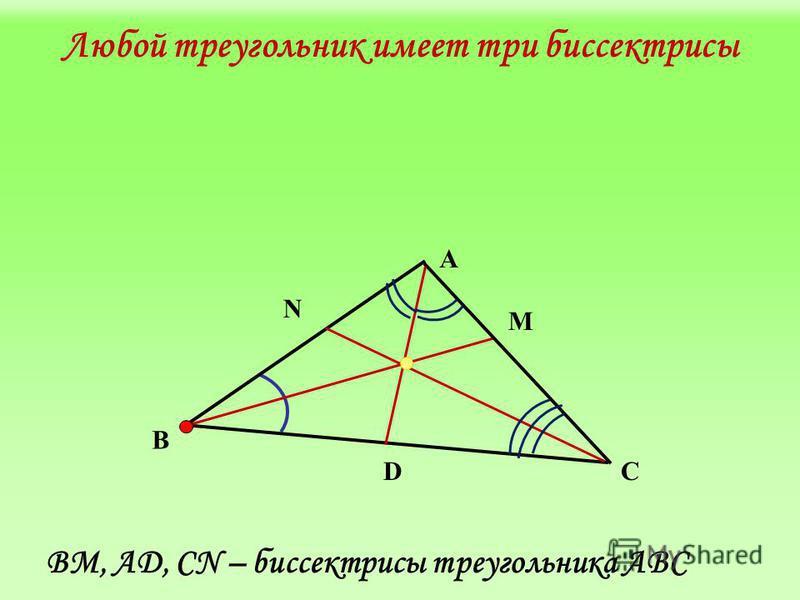 Любой треугольник имеет три биссектрисы А N В М DС BM, АD, CN – биссектрисы треугольника АВС