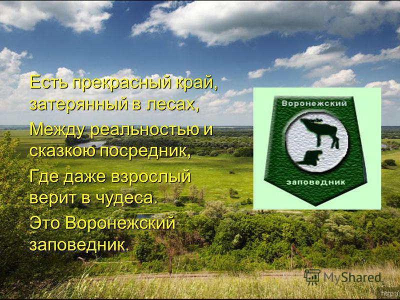 Есть прекрасный край, затерянный в лесах, Между реальностью и сказкою посредник, Где даже взрослый верит в чудеса. Это Воронежский заповедник.