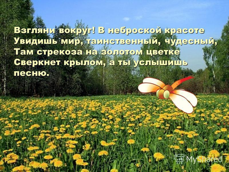 Взгляни вокруг! В неброской красоте Увидишь мир, таинственный, чудесный, Там стрекоза на золотом цветке Сверкнет крылом, а ты услышишь песню.