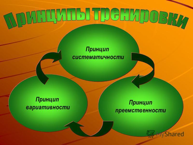 Принцип систематичности Принцип вариативности Принцип преемственности