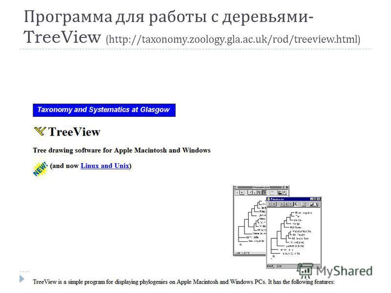 Программа для работы с деревьями - TreeView (http://taxonomy.zoology.gla.ac.uk/rod/treeview.html)