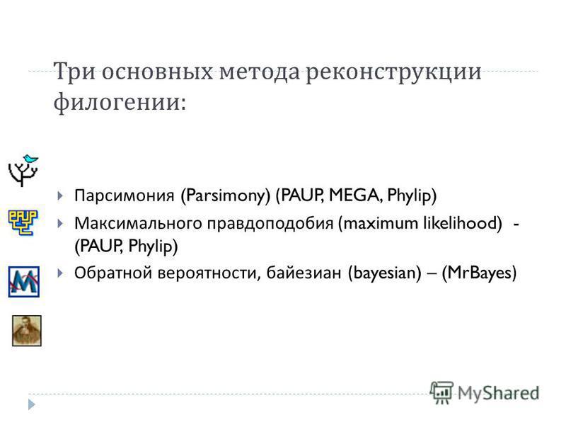 Три основных метода реконструкции филогении : Парсимония (Parsimony) (PAUP, MEGA, Phylip) Максимального правдоподобия (maximum likelihood) - (PAUP, Phylip) Обратной вероятности, байезиан (bayesian) – (MrBayes)