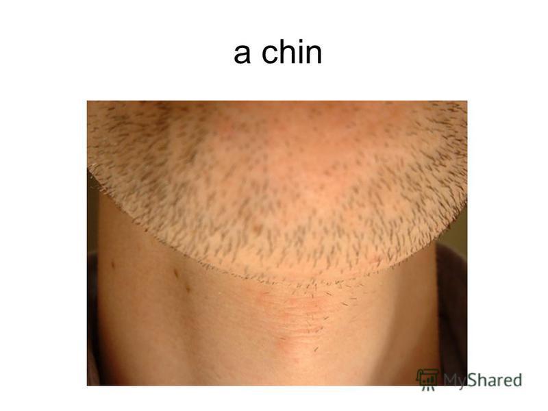 a chin