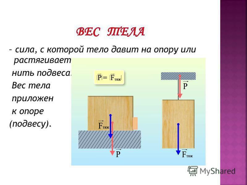 – сила, с которой тело давит на опору или растягивает нить подвеса. Вес тела приложен к опоре (подвесу).