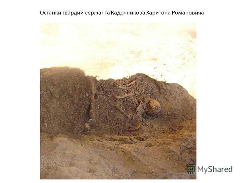 Останки гвардии сержанта Кадочникова Харитона Романовича
