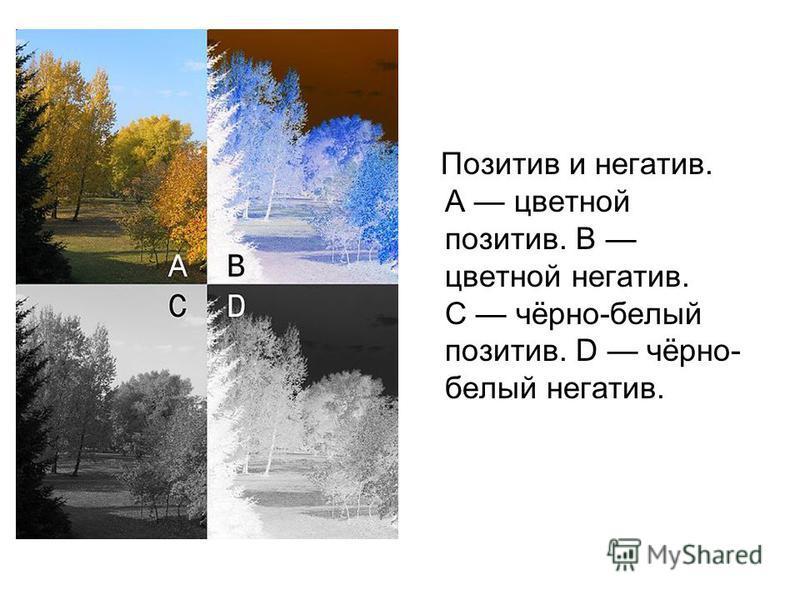 Позитив и негатив. A цветной позитив. B цветной негатив. C чёрно-белый позитив. D чёрно- белый негатив.