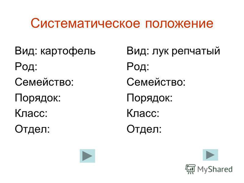Систематическое положение Вид: картофель Род: Семейство: Порядок: Класс: Отдел: Вид: лук репчатый Род: Семейство: Порядок: Класс: Отдел: