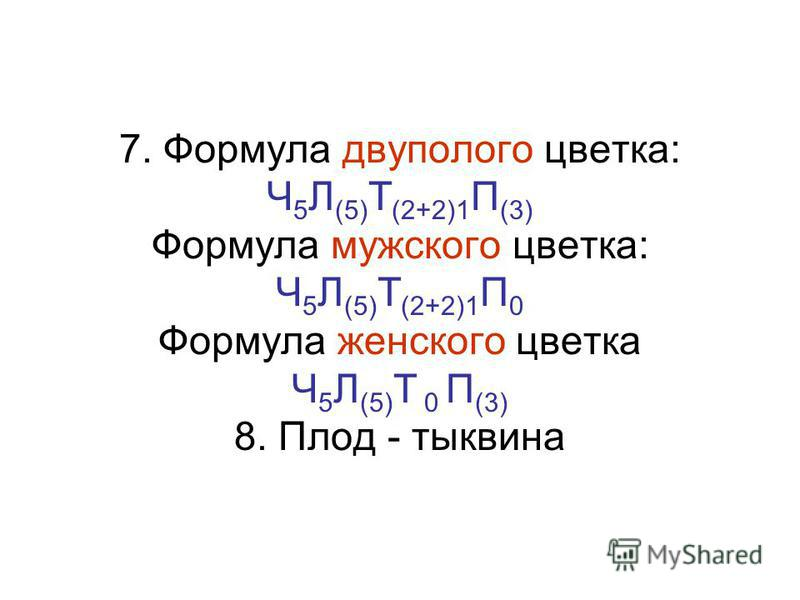7. Формула двуполого цветка: Ч 5 Л (5) Т (2+2)1 П (3) Формула мужского цветка: Ч 5 Л (5) Т (2+2)1 П 0 Формула женского цветка Ч 5 Л (5) Т 0 П (3) 8. Плод - тыквина