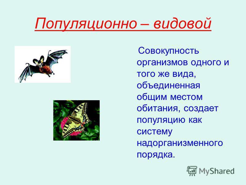 Популяционно – видовой Совокупность организмов одного и того же вида, объединенная общим местом обитания, создает популяцию как систему надорганизменного порядка.