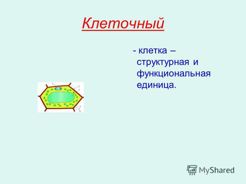 Клеточный - клетка – структурная и функциональная единица.