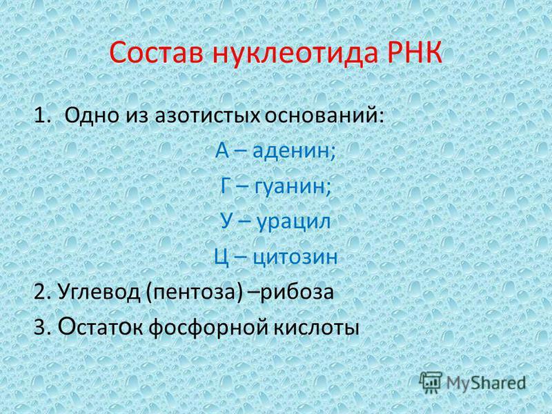 Состав нуклеотида РНК 1. Одно из азотистых оснований: А – аденин; Г – гуанин; У – урацил Ц – цитозин 2. Углевод (пентоза) –рибоза 3. О стат о к фосфорной кислоты