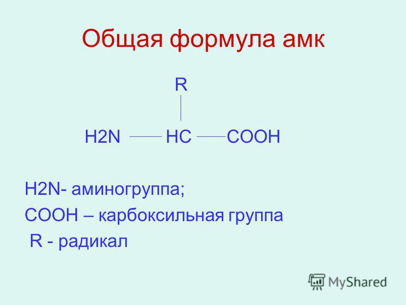 Общая формула амг R Н2N HC COOH Н2N- аминогруппа; COOH – карбоксильная группа R - радикал
