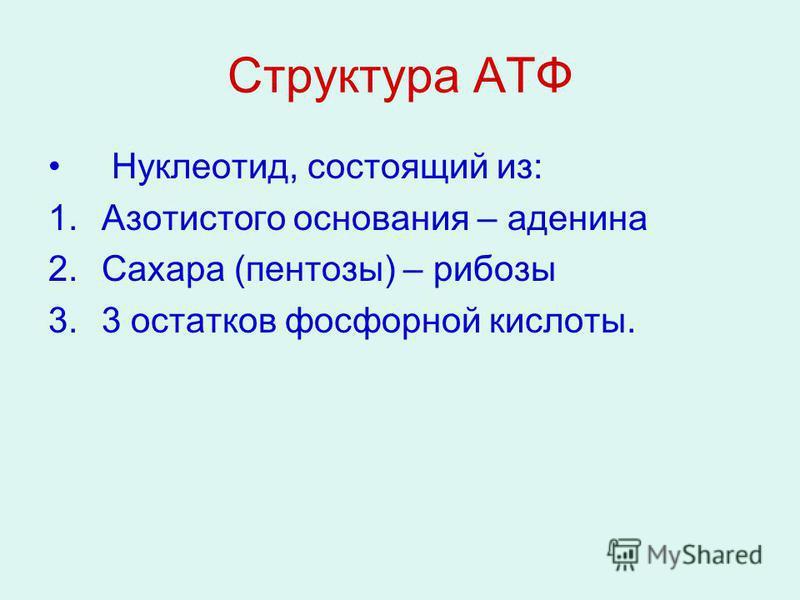 Структура АТФ Нуклеотид, состоящий из: 1. Азотистого основания – аденина 2. Сахара (пентозы) – рибозы 3.3 остатков фосфорной кислоты.