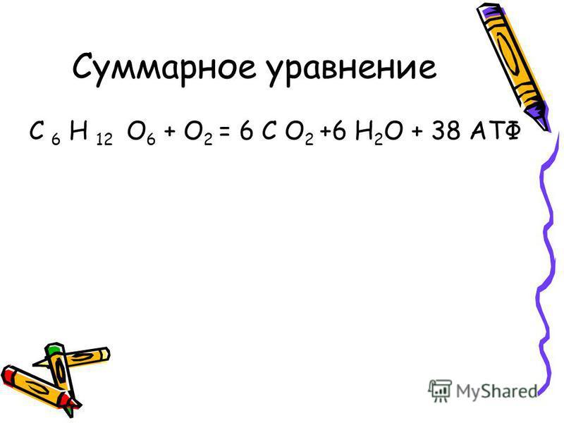 Суммарное уравнение С 6 Н 12 О 6 + О 2 = 6 С О 2 +6 Н 2 О + 38 АТФ