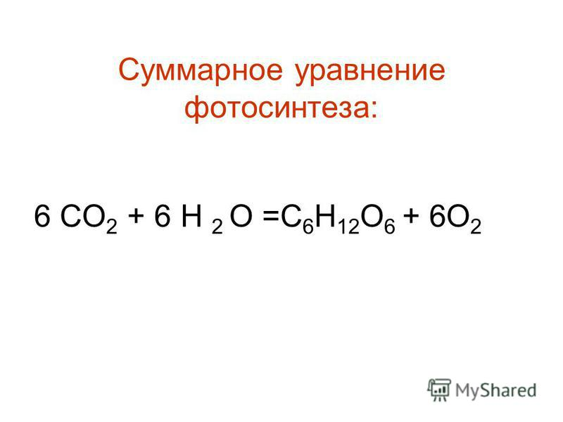 Суммарное уравнение фотосинтеза: 6 СО 2 + 6 Н 2 О =С 6 Н 12 О 6 + 6О 2