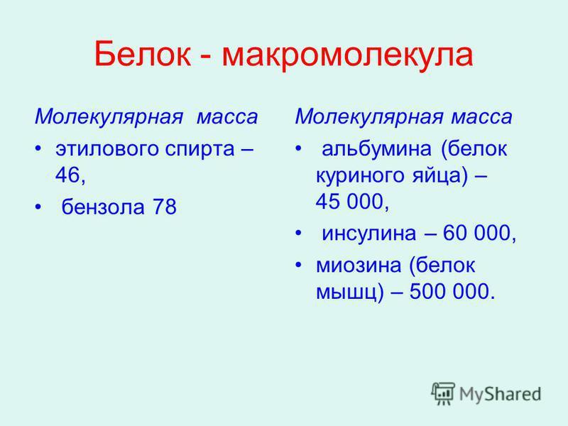 Белок - макромолекула Молекулярная масса этилового спирта – 46, бензола 78 Молекулярная масса альбумина (белок куриного яйца) – 45 000, инсулина – 60 000, миозина (белок мышц) – 500 000.