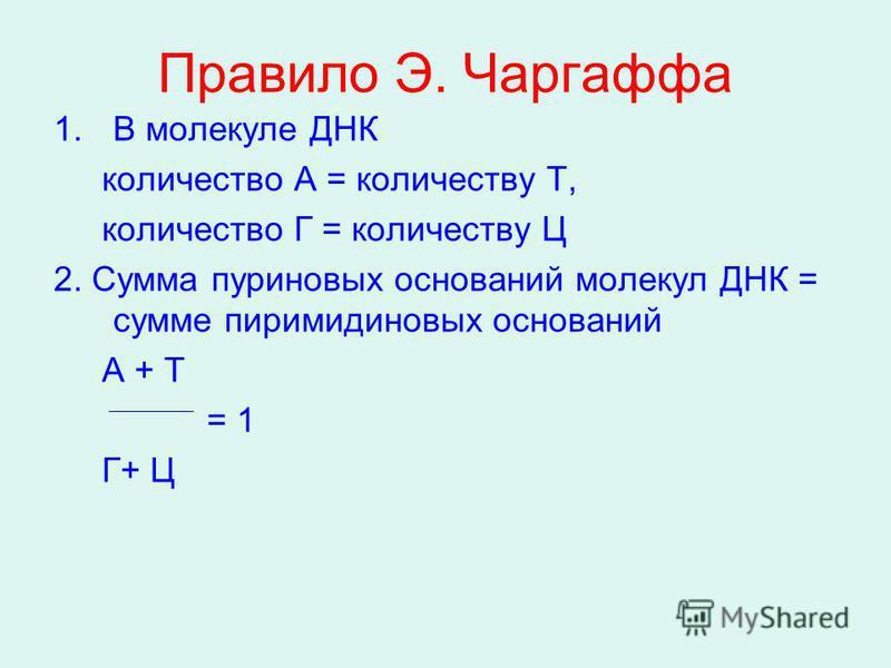 Правило Э. Чаргаффа 1. В молекуле ДНК количество А = количеству Т, количество Г = количеству Ц 2. Сумма пуриновых оснований молекул ДНК = сумме пиримидиновых оснований А + Т = 1 Г+ Ц