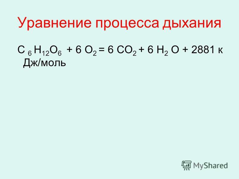 Уравнение процесса дыхания С 6 Н 12 О 6 + 6 О 2 = 6 СО 2 + 6 Н 2 О + 2881 к Дж/моль