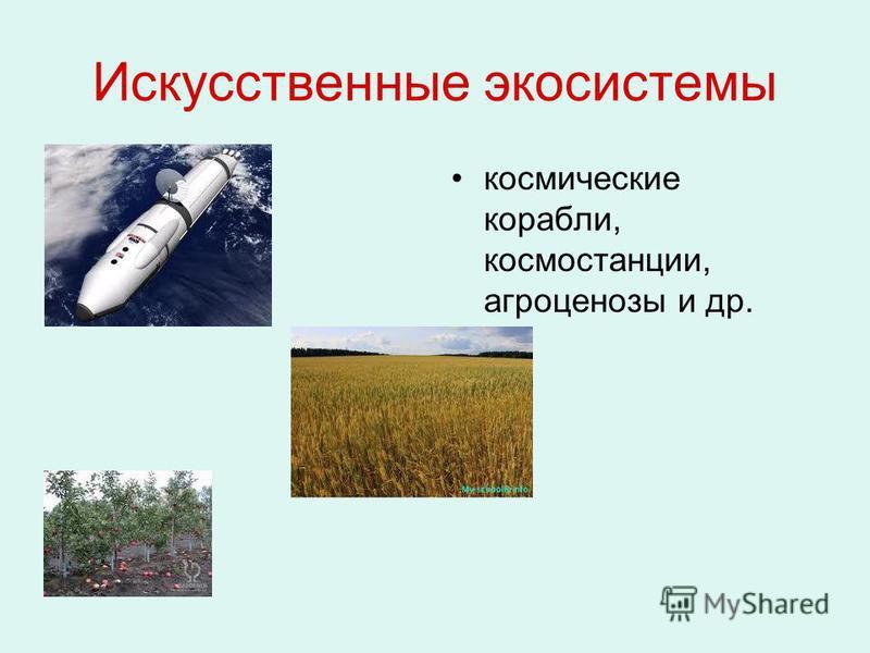 Искусственные экосистемы космические корабли, космостанции, агроценозы и др.