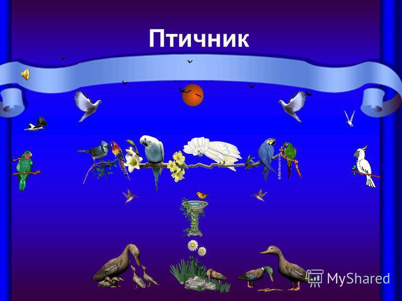 Птичник