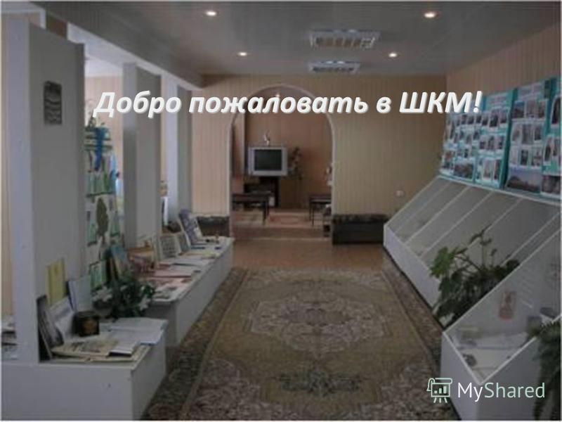 Добро пожаловать в ШКМ!