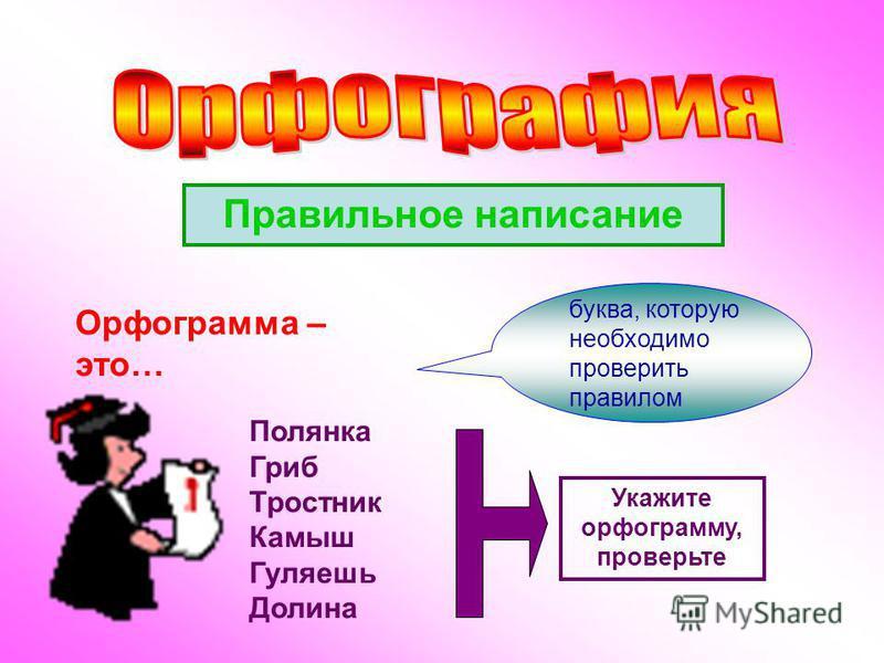 Орфограмма – это… Правильное написание буква, которую необходимо проверить правилом Полянка Гриб Тростник Камыш Гуляешь Долина Укажите орфограмму, проверьте