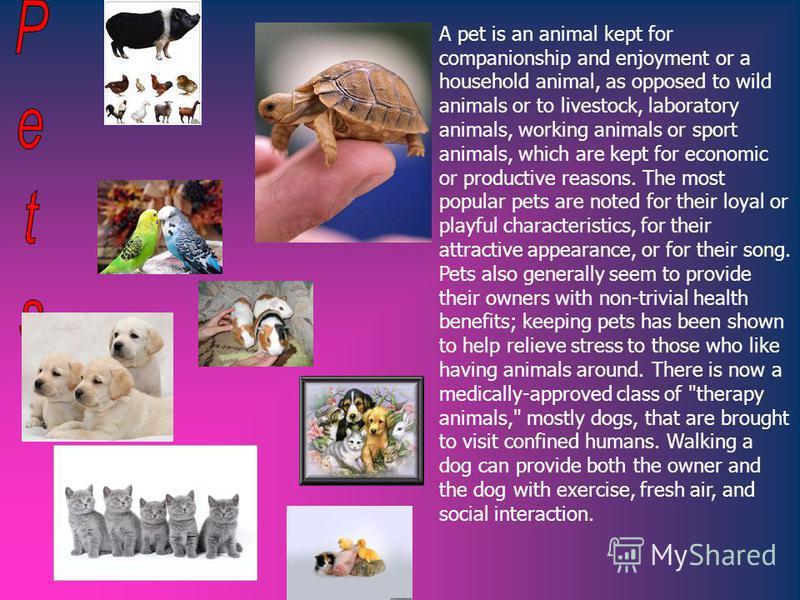 Animals Pets Farm animals BirdsInsectFish
