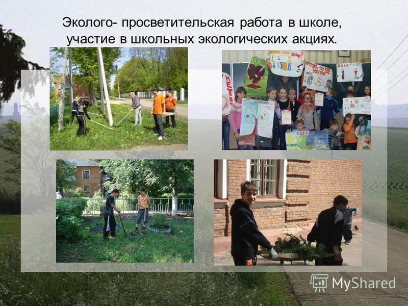 Эколого- просветительская работа в школе, участие в школьных экологических акциях.