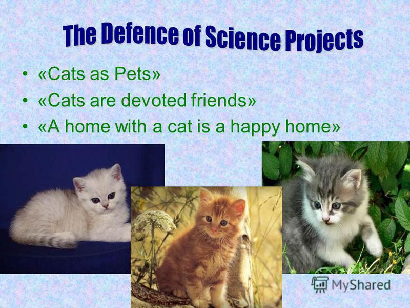«Cats as Pets» «Cats are devoted friends» «A home with a cat is a happy home»