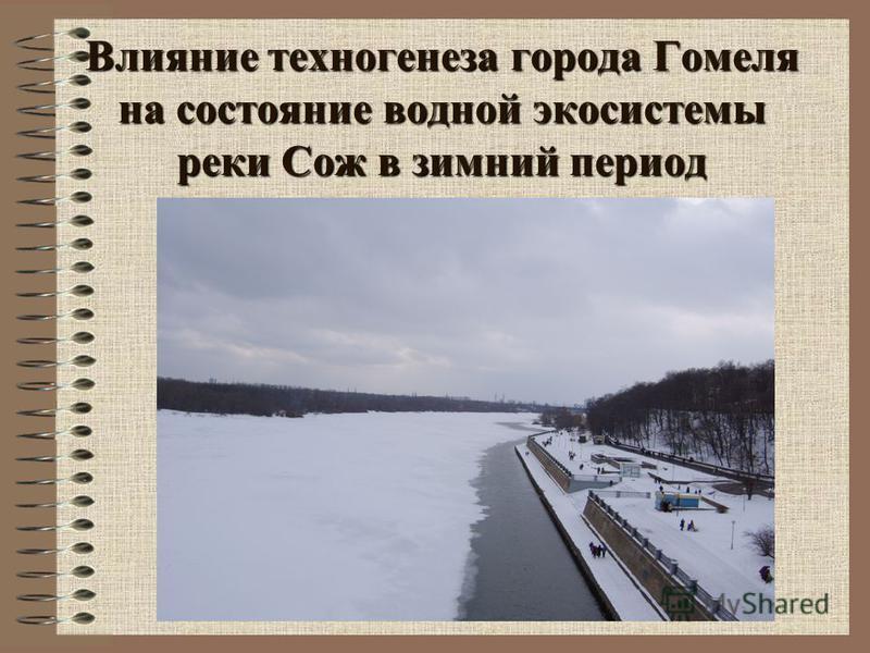 Влияние техногенеза города Гомеля на состояние водной экосистемы реки Сож в зимний период