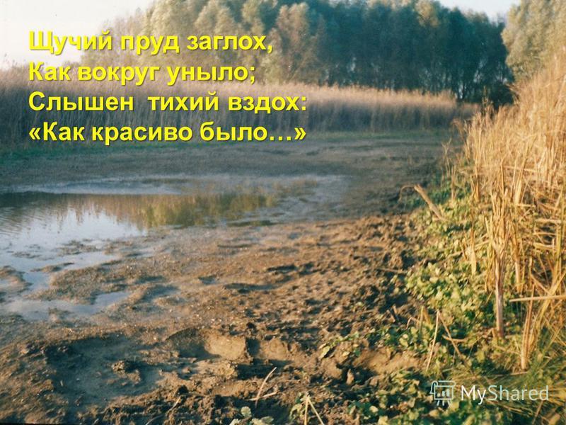 Щучий пруд заглох, Как вокруг уныло; Слышен тихий вздох: «Как красиво было…»