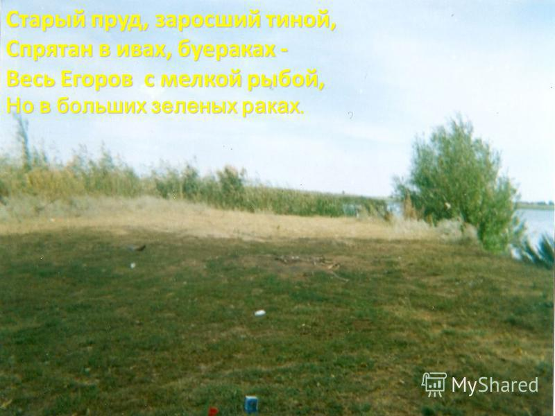 Старый пруд, заросший тиной, Спрятан в ивах, буераках - Весь Егоров с мелкой рыбой, Но в больших зеленых раках.